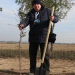 акция skyway посади дерево скайвей 1