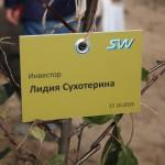 акция skyway посади дерево скайвей 16