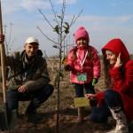 акция skyway посади дерево скайвей 17