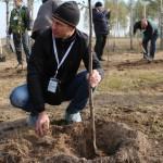 акция skyway посади дерево скайвей 20