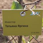 акция skyway посади дерево скайвей 21