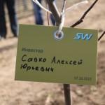 акция skyway посади дерево скайвей 22