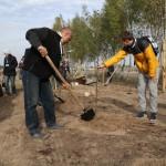 акция skyway посади дерево скайвей 27