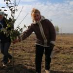 акция skyway посади дерево скайвей 28