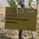 акция skyway посади дерево скайвей 30
