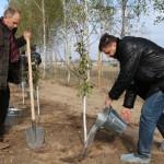 акция skyway посади дерево скайвей 34