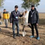 акция skyway посади дерево скайвей 35