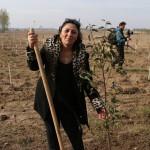 акция skyway посади дерево скайвей 40