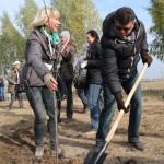 акция skyway посади дерево скайвей 41