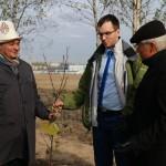 акция skyway посади дерево скайвей 43