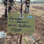 акция skyway посади дерево скайвей 48