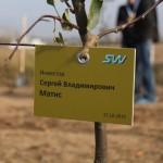 акция skyway посади дерево скайвей 5