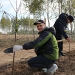 акция skyway посади дерево скайвей 53