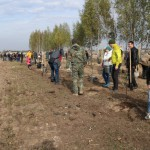 акция skyway посади дерево скайвей 61