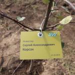 акция skyway посади дерево скайвей 62