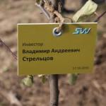 акция skyway посади дерево скайвей 63