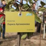 акция skyway посади дерево скайвей 87