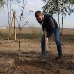 акция skyway посади дерево скайвей 88