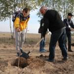 акция skyway посади дерево скайвей 90