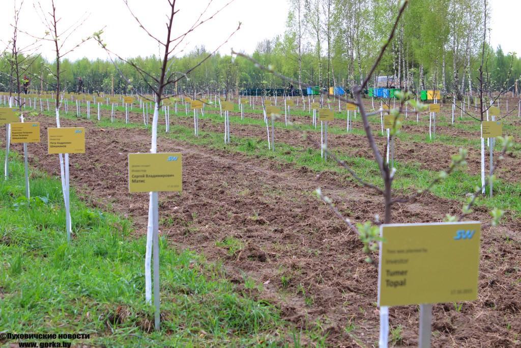 2500 деревьев посаженных частными инвесторами в Экотехнопарке.