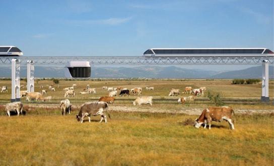 сельское хозяйство и skyway