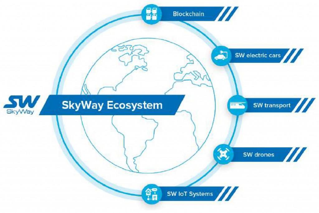экосистема skyway