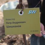 акция skyway посади дерево скайвей 10