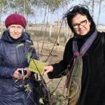 акция skyway посади дерево скайвей 18