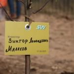 акция skyway посади дерево скайвей 19