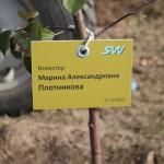 акция skyway посади дерево скайвей 31