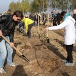 акция skyway посади дерево скайвей 49