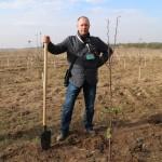 акция skyway посади дерево скайвей 52