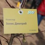 акция skyway посади дерево скайвей 54