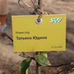 акция skyway посади дерево скайвей 55