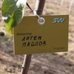 акция skyway посади дерево скайвей 70