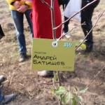 акция skyway посади дерево скайвей 82