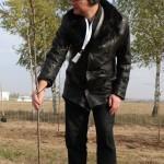 акция skyway посади дерево скайвей 83