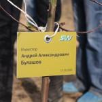 акция skyway посади дерево скайвей 89