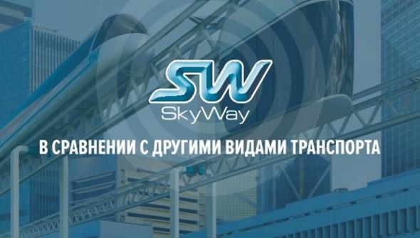 skyway сравнение чем лучше-min