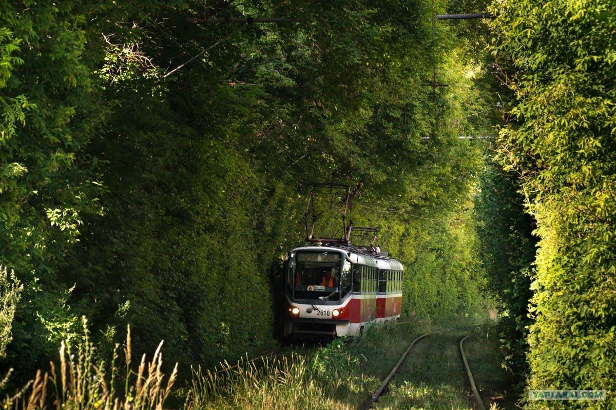 трамвай-экология